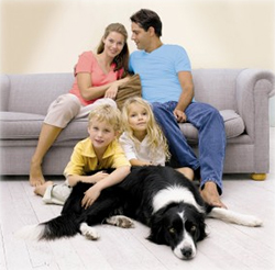 Carpet Cleaning Services cypress tx